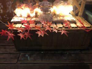 貝殻のオブジェ、紅葉